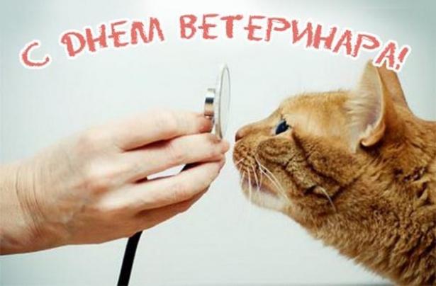 otkritki-s-dnem-veterinarnaya-pozdravlenie foto 18