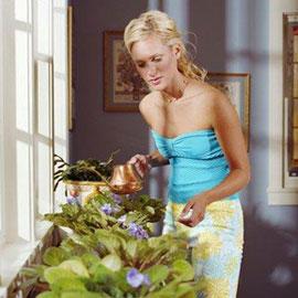 Растения-убийцы: что мы держим в квартире
