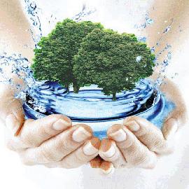 Какую воду пить? Вот в чем вопрос…