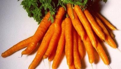 Морковь продлевает жизнь