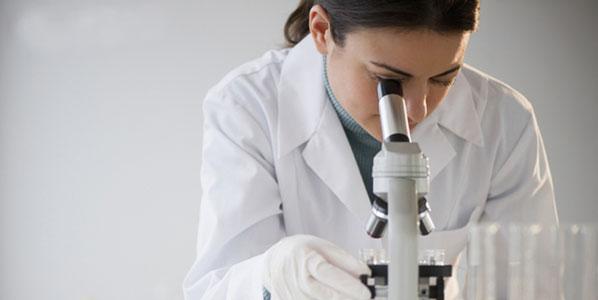 Ученые определили количество микробов в организме человека