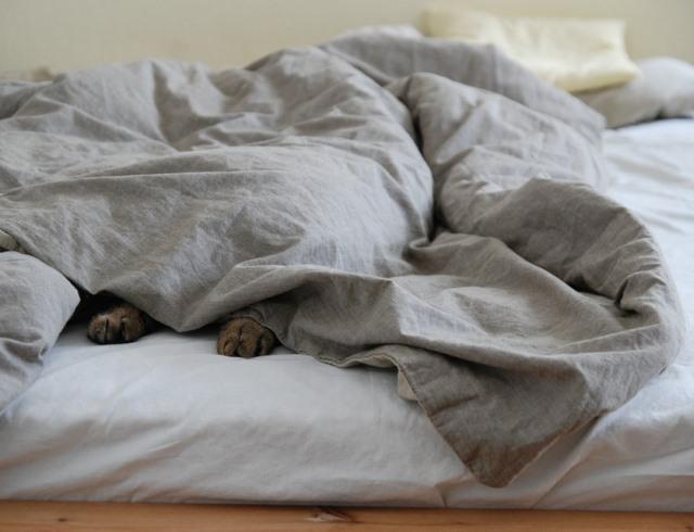 Что делать, если не получается заснуть?