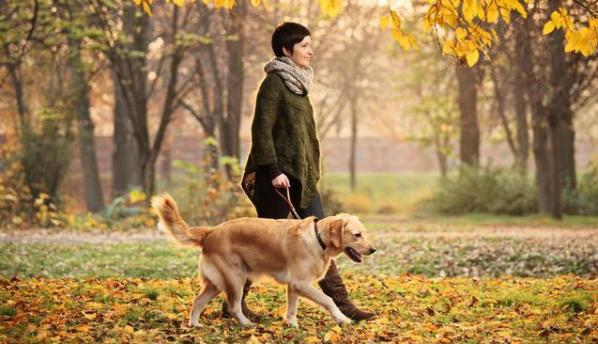 Ежедневная часовая прогулка продлевает жизнь на 4,5 года