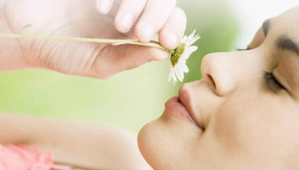 Как облегчить симптомы аллергии на пыльцу?