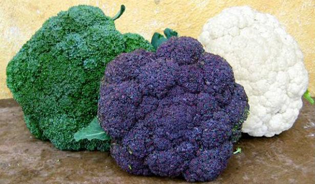Цветная капуста признана самым полезным овощем