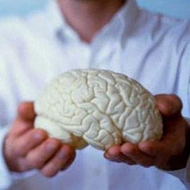 Нестареющий мозг – это возможно?
