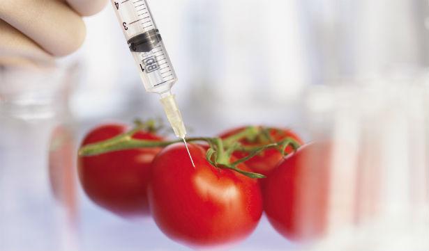 Стоит ли бояться продукты с ГМО: мнение специалиста