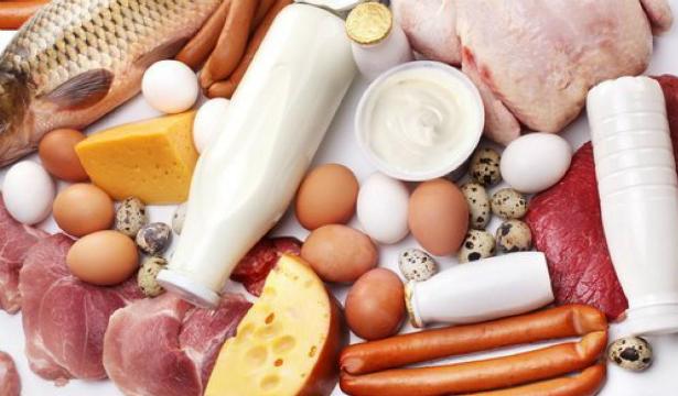 Белковая диета продлевает жизнь