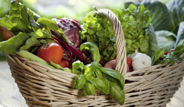 Мобильные приложения для вегетарианцев