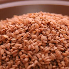 От полипов в кишечнике спасут коричневый рис и бобы