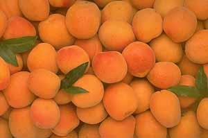 Варенье из сухих абрикосов