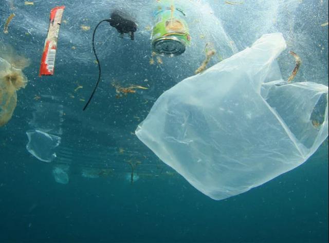 запрет на пластиковые пакеты в украине