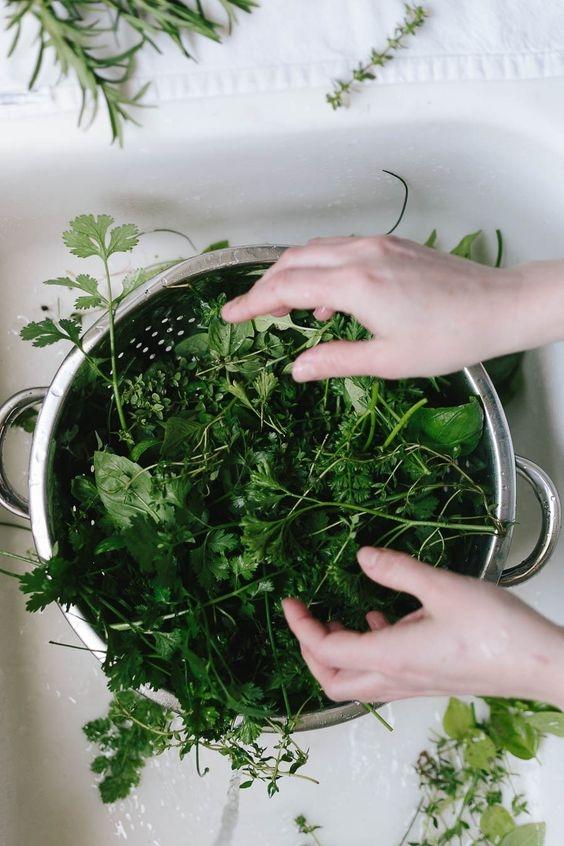 Замороженная зелень позволяет готовить летние блюда даже в холода