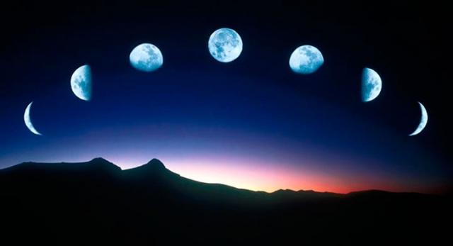 Когда сажать чеснок: даты по лунному календарю и способы посадки