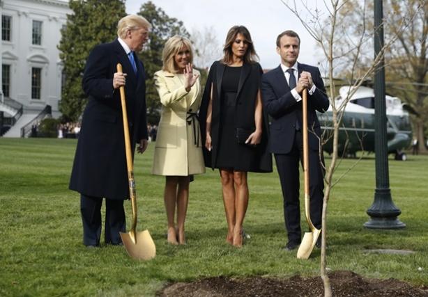 трамп и макрон посадили дуб