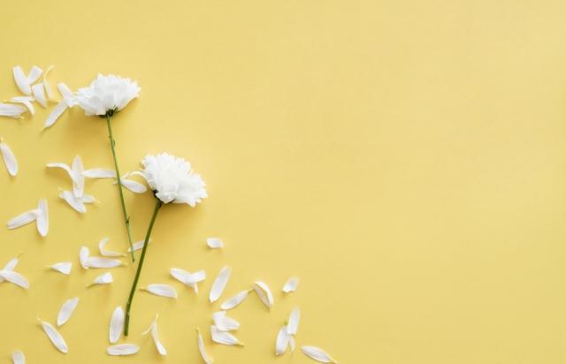 Мазок на флору – ПЦР анализ, результаты, норма