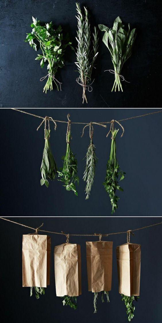 Пряные травы - самый популярный компонент для настаивания масла