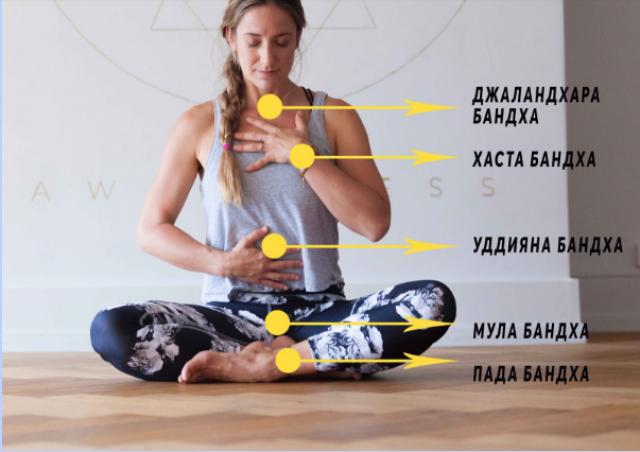 теория йоги