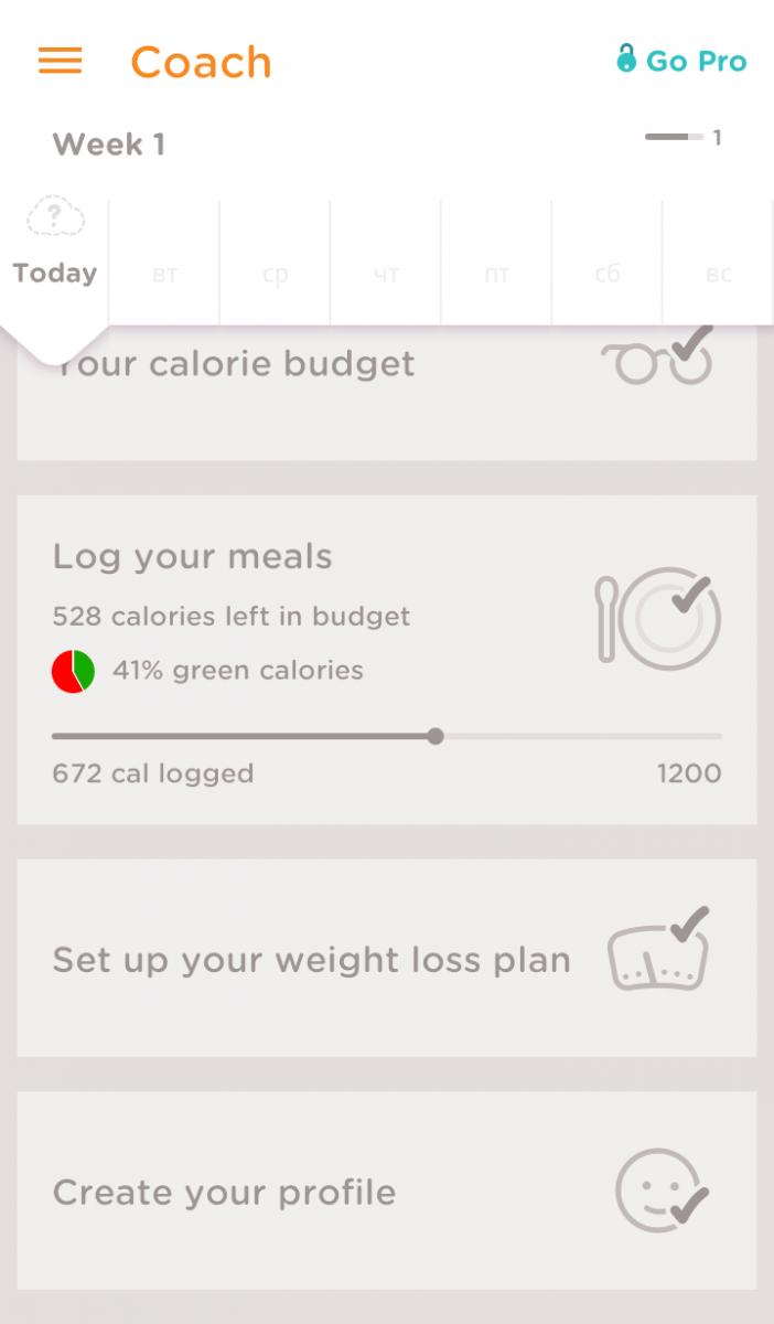 программы по похудению на тв