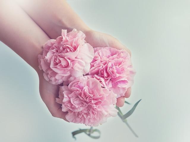 Изображение - Красивые поздравления для учителей на день учителя cloves-1367675_960_720(3)