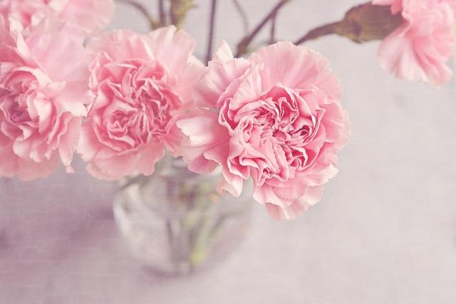 Изображение - Красивые поздравления для учителей на день учителя flowers-1313827_960_720