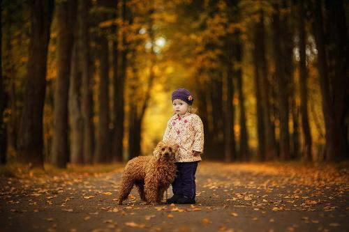 осень прогулки