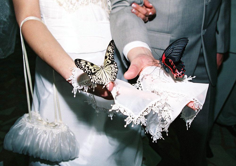 Подарок молодым на свадьбу