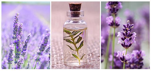 как выбрать весенний парфюм