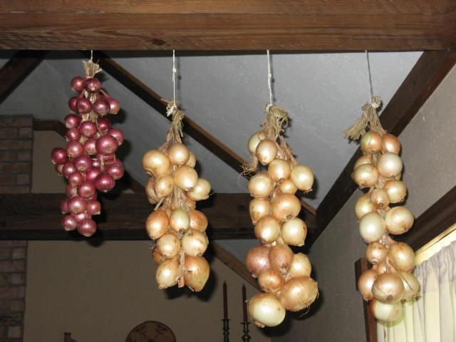 Лук дома: лучшие способы хранения овоща в домашних условиях