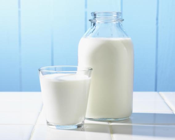 Чем заменить молоко: другие источники кальция