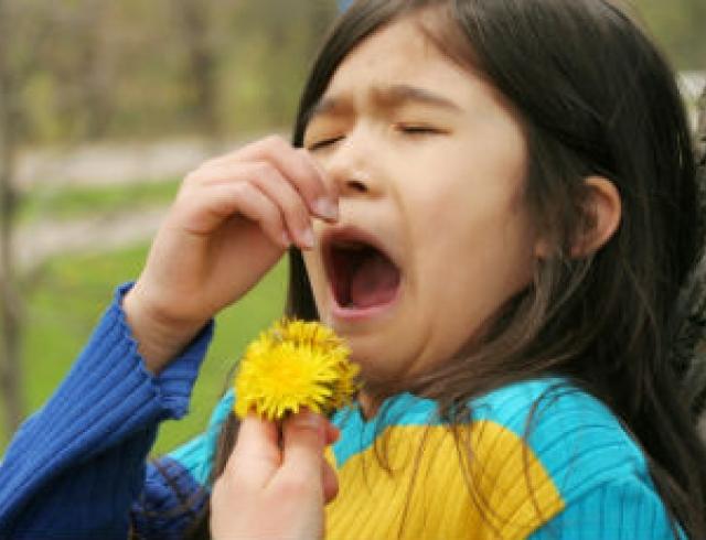 сезонная аллергия на цветение лекарства