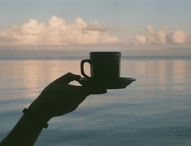 чай для похудения в домашних условиях сделать