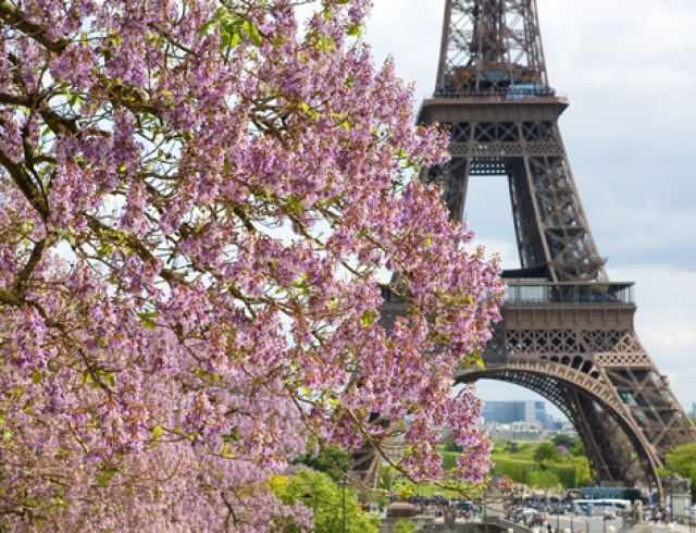 """Résultat de recherche d'images pour """"французская весна"""""""
