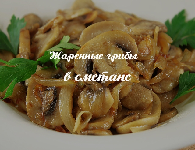 Белые грибы готовить рецепты 5