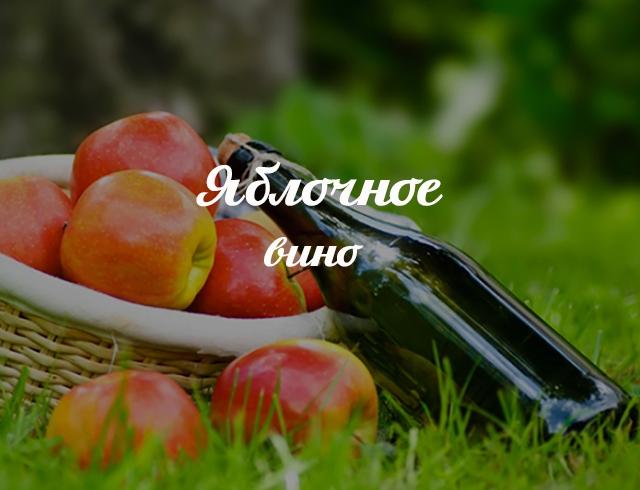 Как приготовит вино из яблоки в домашних условиях 244