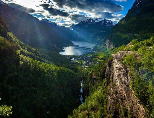 Впервые в мире: в Норвегии официально отказались от вырубки лесов