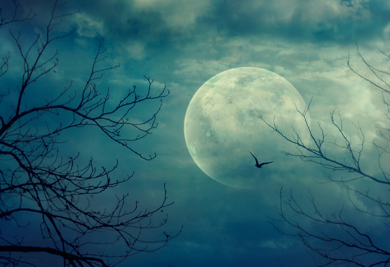 лунный календарь октябрь 2020