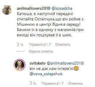 роман мишиной и остапчука