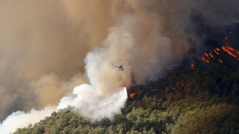 В Турции бушуют лесные пожары: погибло три человека (ФОТО) - фото №3