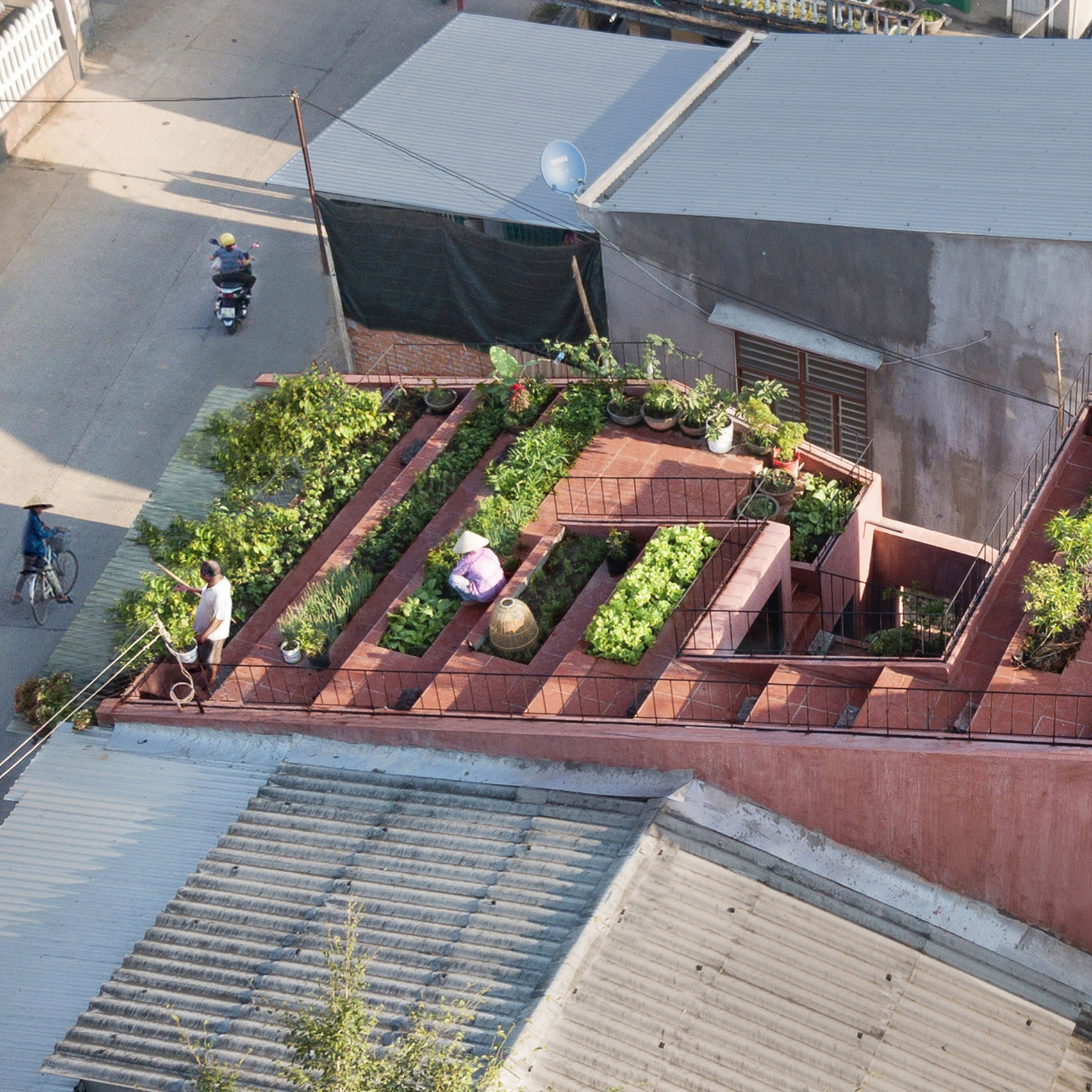 Шедевры архитектуры: 10 самых необычных домов мира, которые построили в 2020 году (ФОТО) - фото №2