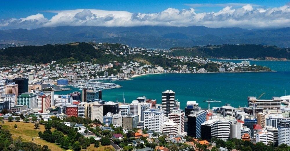 Новая Зеландия выходит из карантина: жители рассказали как страна победила вирус - фото №4