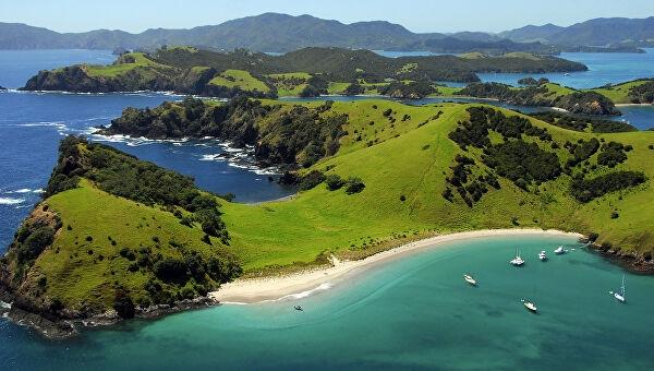 Новая Зеландия выходит из карантина: жители рассказали как страна победила вирус - фото №2