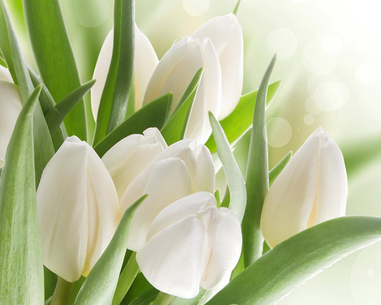 день ангела 22 апреля