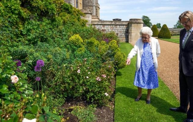 Королеве Елизавете II подарили специальный сорт роз, названный в честь