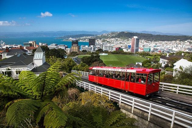 Новая Зеландия выходит из карантина: жители рассказали как страна победила вирус - фото №1