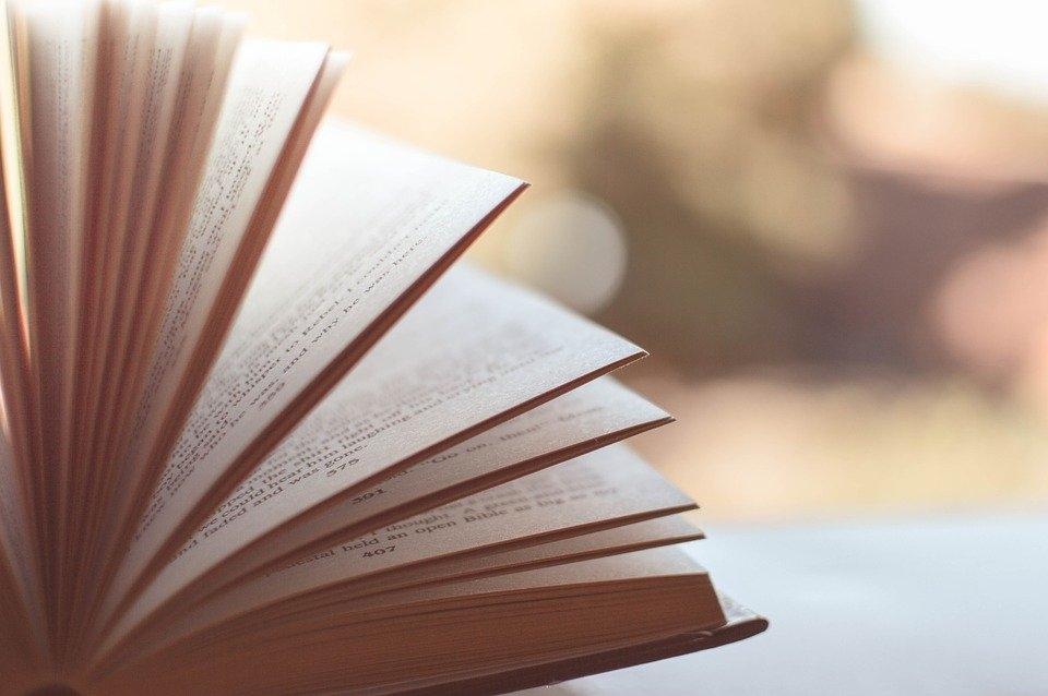 интересные книги украинской литературы