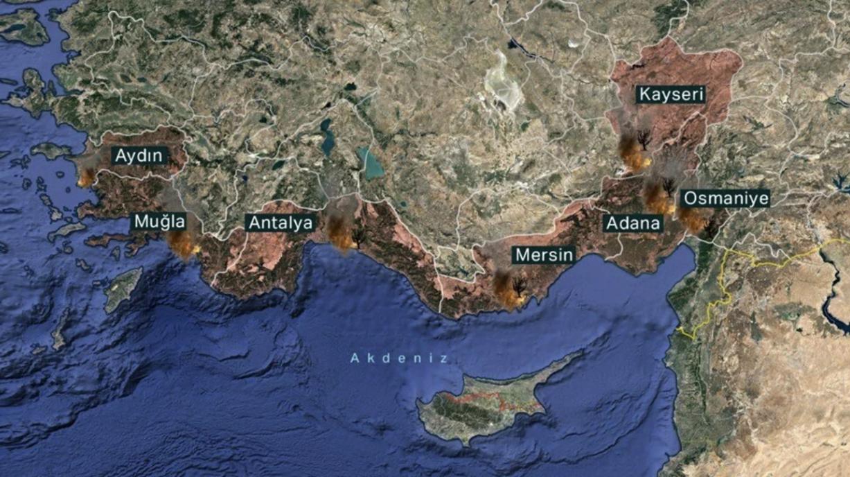 В Турции бушуют лесные пожары: погибло три человека (ФОТО) - фото №1