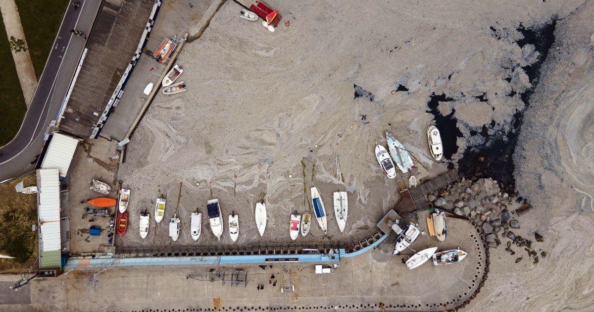 Экологическая катастрофа? В Турции Мраморное море покрылось серой слизью - фото №2