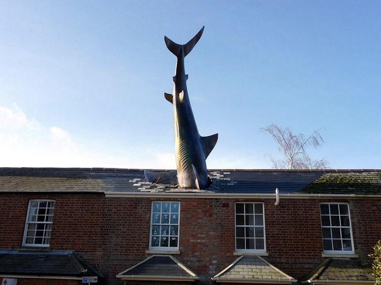 Памятник Акулы, Хэдингтон
