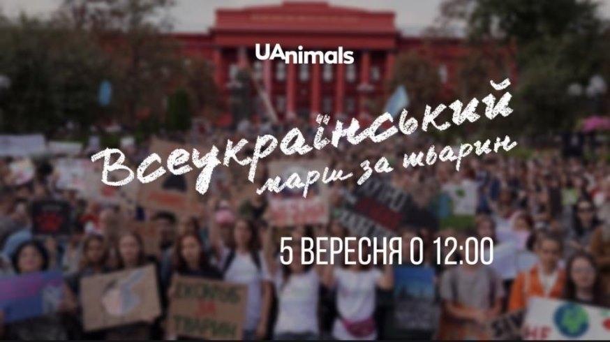 Куда пойти на выходных в Киеве: интересные события 4 и 5 сентября - фото №5